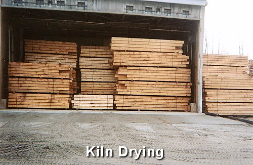 Kiln Drying Logs