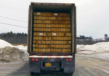 Wholesale logs in truck container for export